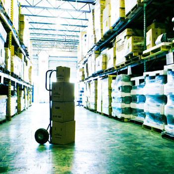 Wholesale & Distribution